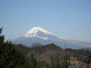 伊豆大仁からの富士山.JPG