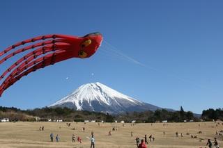 巨大タコが舞う画像 富士宮市.jpg