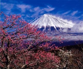 絶景・富士山画像・富士市.jpg